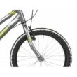 "KROSS Hexagon Mini 1.0 20"" graphite / lime / silver 2021"