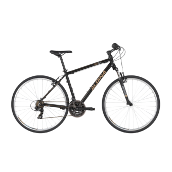 ALPINA ECO C10 2020 Cross Trekking kerékpár - Több színben