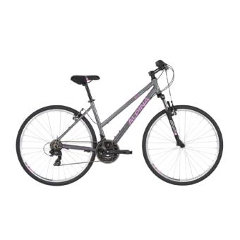 ALPINA ECO LC10 2020 Női Crosstrekking Kerékpár