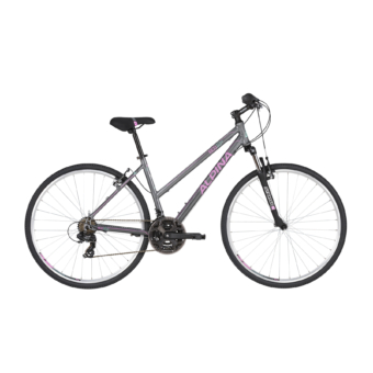 ALPINA ECO LC10 Grey 2021